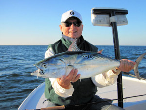 Frank Zaffino caught and released this Sarasota false albacore on a Grassett Snook Minnow fly