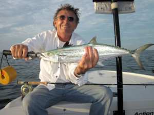 John Green caught and released this nice Spanish mackerel on a fly popper while fishing the coastal gulf in Sarasota with Capt. Rick Grassett