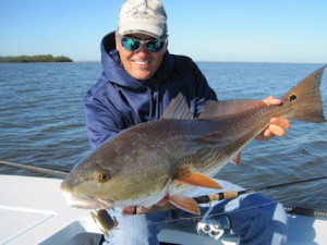Capt. Rick DePaiva, from Ft. Myers, FL, caught and released this big red that was tailing on shallow grass on a DOA Crab while fishing Pine Island Sound last December.
