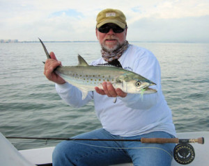 Capt. Rick Grassett caught and released this nice Spanish mackerelon an Ultra Hair Clouser fly  while fishing Sarasota Bay in January.